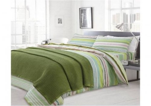blanket_grassy_green_image_01
