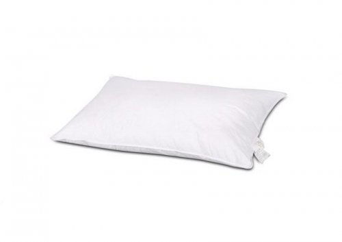 goose_down_pillow_image_01